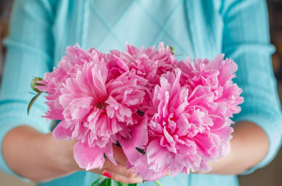 Menopauza i okres okołomenopauzalny – jak poradzić sobie z nieprzyjemnymi objawami klimakterium?