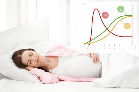Estrogeny – hormony w służbie kobiecości